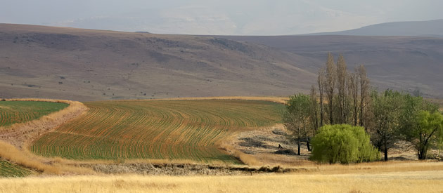 Clarens, in the Free State, South Africa
