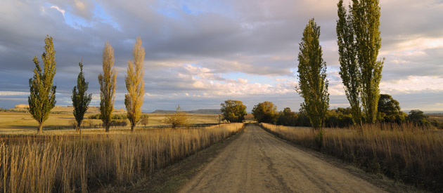 Petrus Steyn is a small farming town situated in the Thabo Mofutsanyana region of the Free State Province in South Africa.